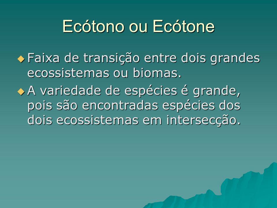 Ecótono ou Ecótone Faixa de transição entre dois grandes ecossistemas ou biomas. Faixa de transição entre dois grandes ecossistemas ou biomas. A varie