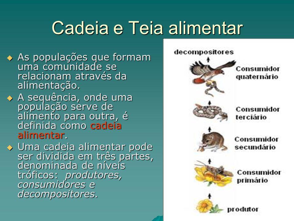 Cadeia e Teia alimentar As populações que formam uma comunidade se relacionam através da alimentação. As populações que formam uma comunidade se relac