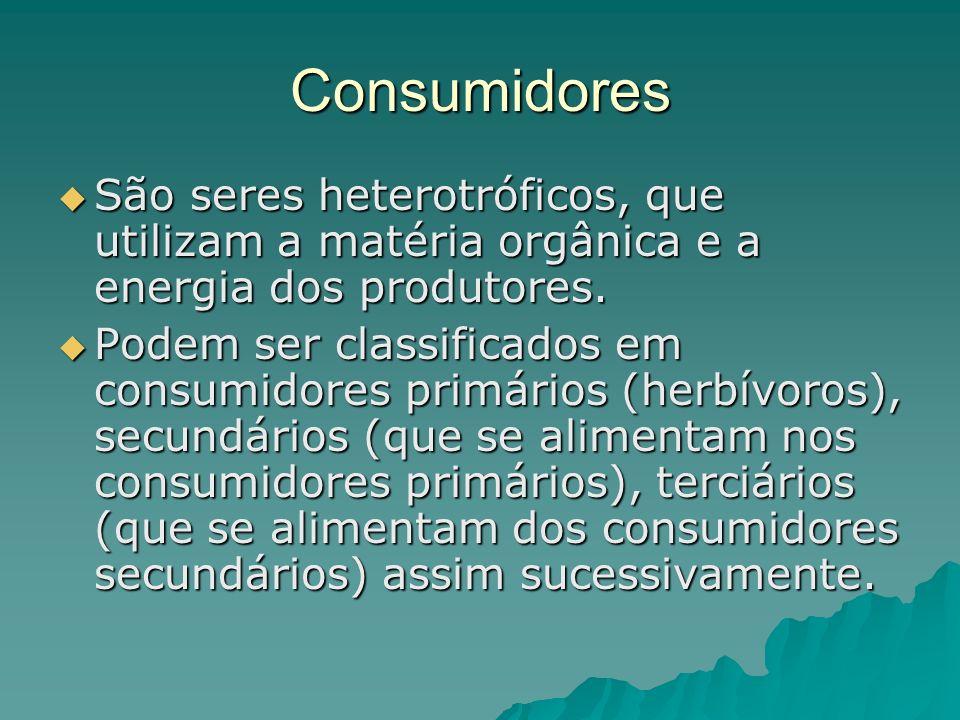 Consumidores São seres heterotróficos, que utilizam a matéria orgânica e a energia dos produtores. São seres heterotróficos, que utilizam a matéria or