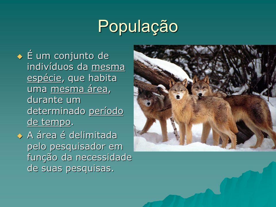 População É um conjunto de indivíduos da mesma espécie, que habita uma mesma área, durante um determinado período de tempo. É um conjunto de indivíduo