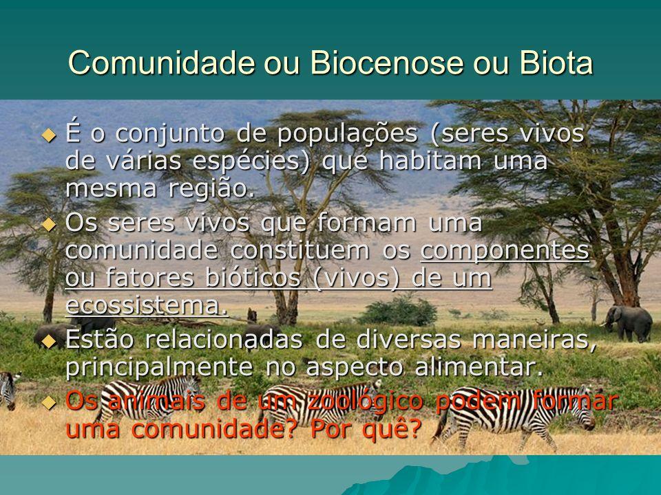Comunidade ou Biocenose ou Biota É o conjunto de populações (seres vivos de várias espécies) que habitam uma mesma região. É o conjunto de populações