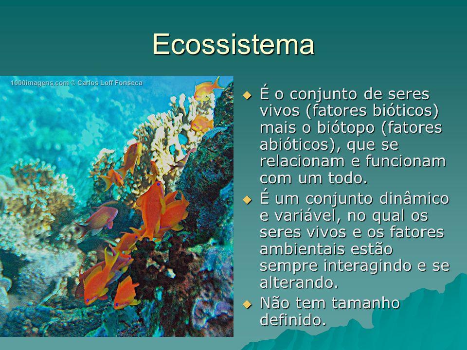 Ecossistema É o conjunto de seres vivos (fatores bióticos) mais o biótopo (fatores abióticos), que se relacionam e funcionam com um todo. É o conjunto