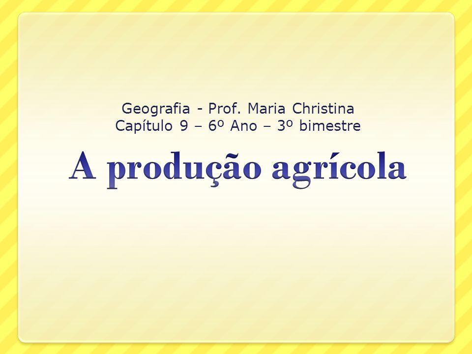 Cadeia agroindustrial do café