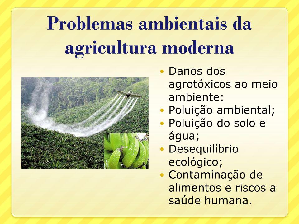 Problemas ambientais da agricultura moderna Danos dos agrotóxicos ao meio ambiente: Poluição ambiental; Poluição do solo e água; Desequilíbrio ecológi