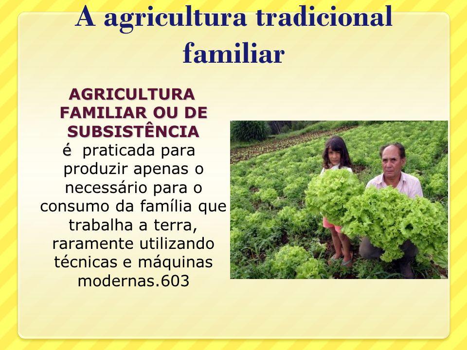 A agricultura tradicional familiar AGRICULTURA FAMILIAR OU DE SUBSISTÊNCIA AGRICULTURA FAMILIAR OU DE SUBSISTÊNCIA é é praticada para produzir apenas