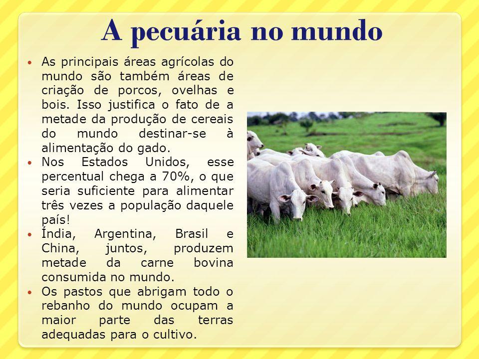 A pecuária no mundo As principais áreas agrícolas do mundo são também áreas de criação de porcos, ovelhas e bois. Isso justifica o fato de a metade da