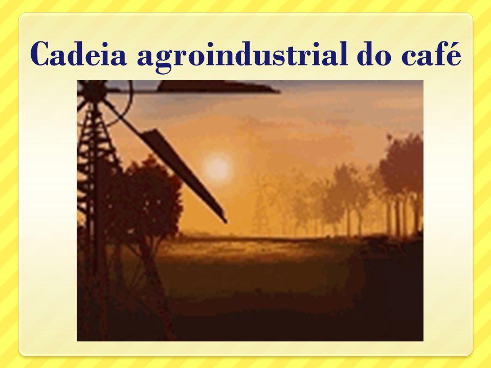 O caminho que um produto agrícola percorre até chegar à nossa mesa é constituído por várias etapas de produção.