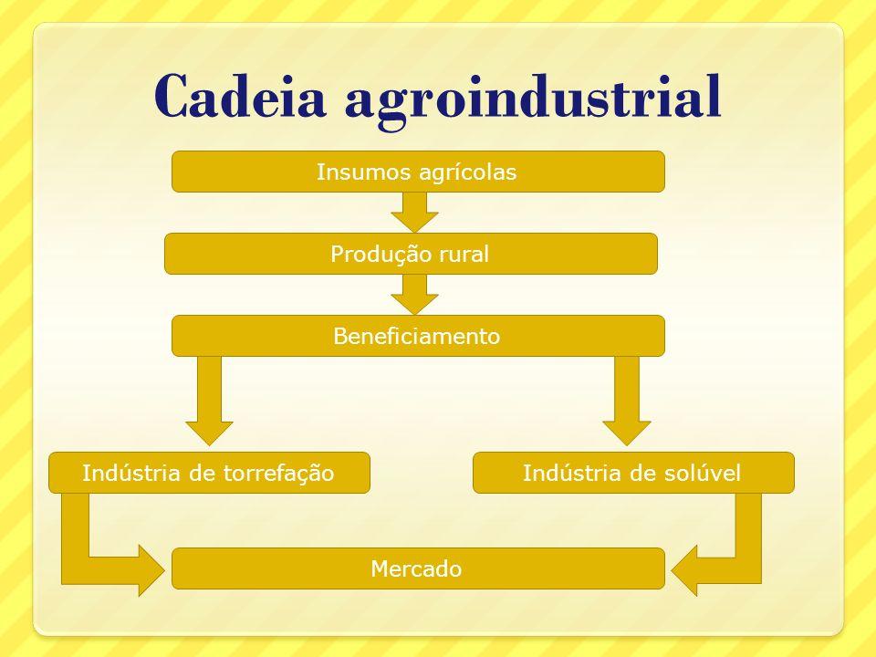 O trabalho no campo Como a atividade agrícola é muito diversificada, as relações de trabalho e suas formas de pagamento também o são.