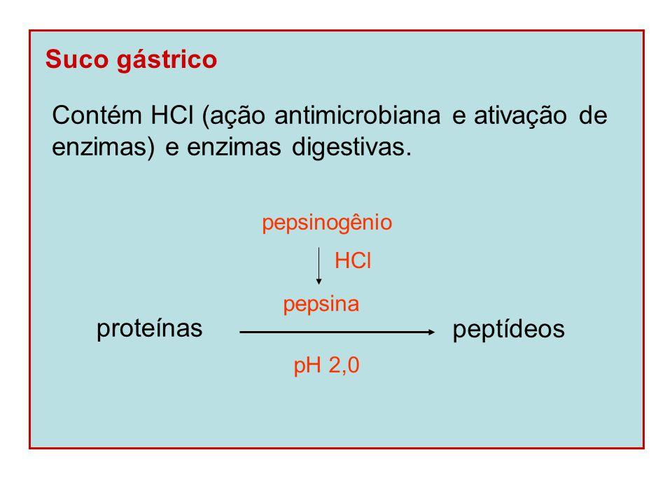 Suco gástrico Contém HCl (ação antimicrobiana e ativação de enzimas) e enzimas digestivas. proteínas peptídeos pepsinogênio pepsina HCl pH 2,0