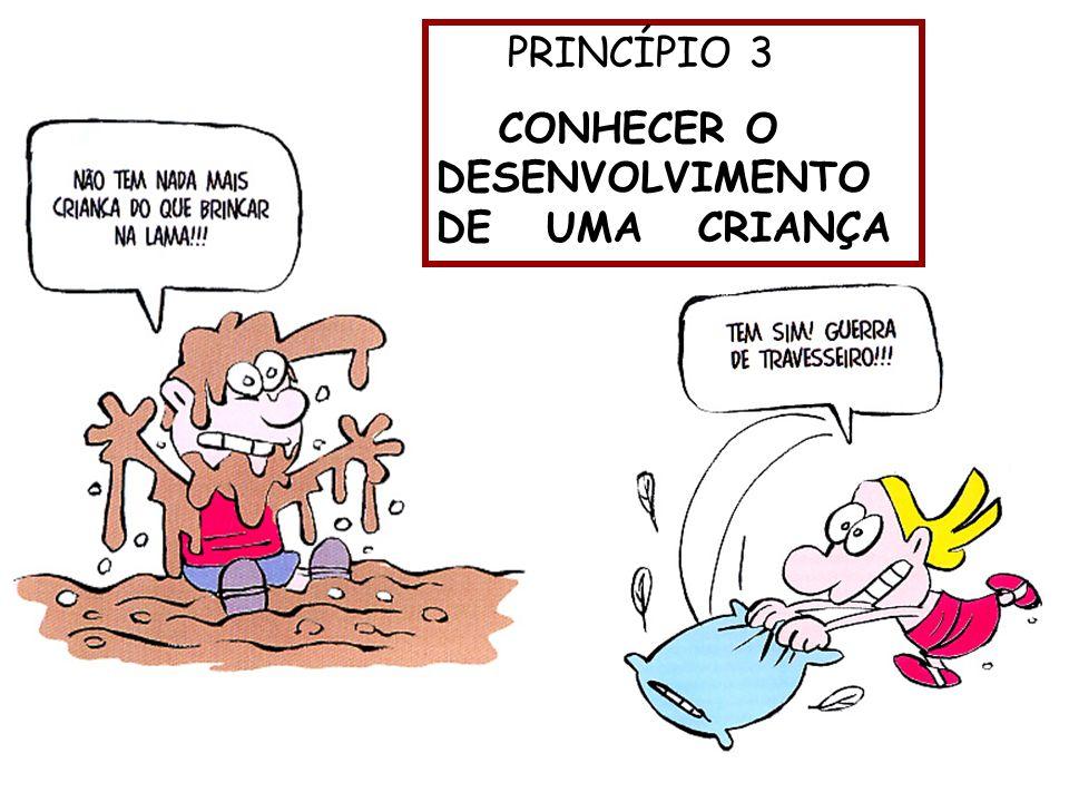 PRINCÍPIO 3 CONHECER O DESENVOLVIMENTO DE UMA CRIANÇA