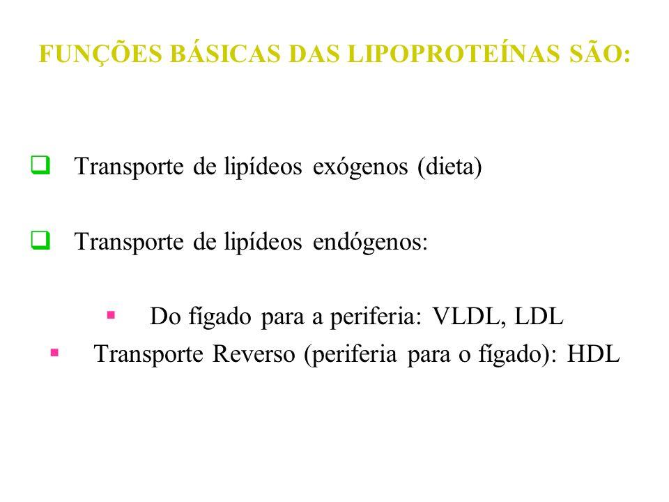 FUNÇÕES BÁSICAS DAS LIPOPROTEÍNAS SÃO: Transporte de lipídeos exógenos (dieta) Transporte de lipídeos endógenos: Do fígado para a periferia: VLDL, LDL