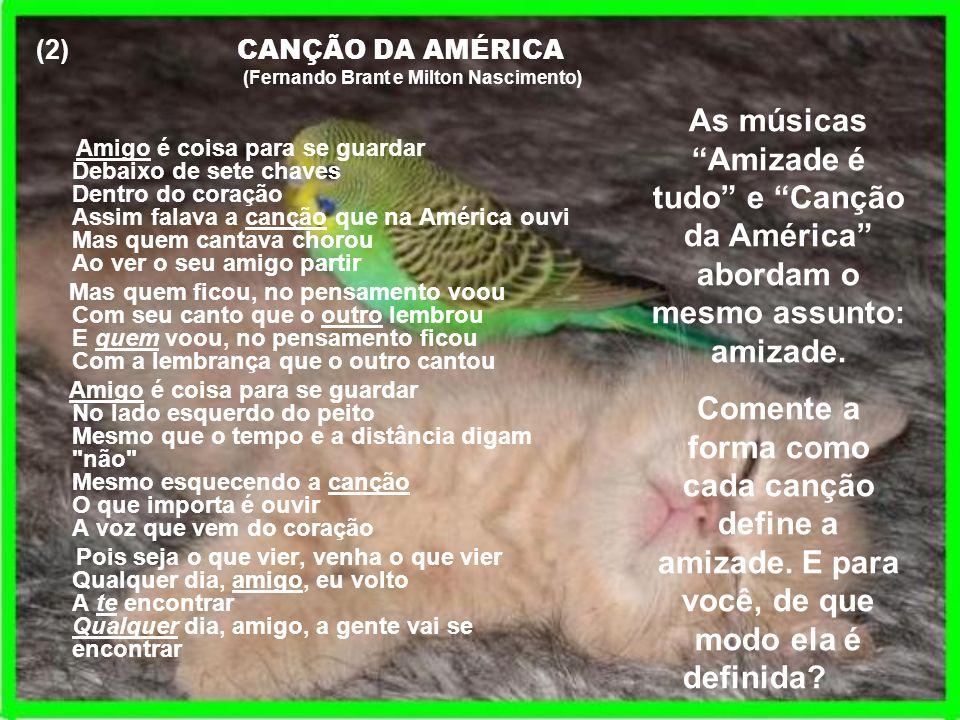 (2) CANÇÃO DA AMÉRICA (Fernando Brant e Milton Nascimento) Amigo é coisa para se guardar Debaixo de sete chaves Dentro do coração Assim falava a cançã