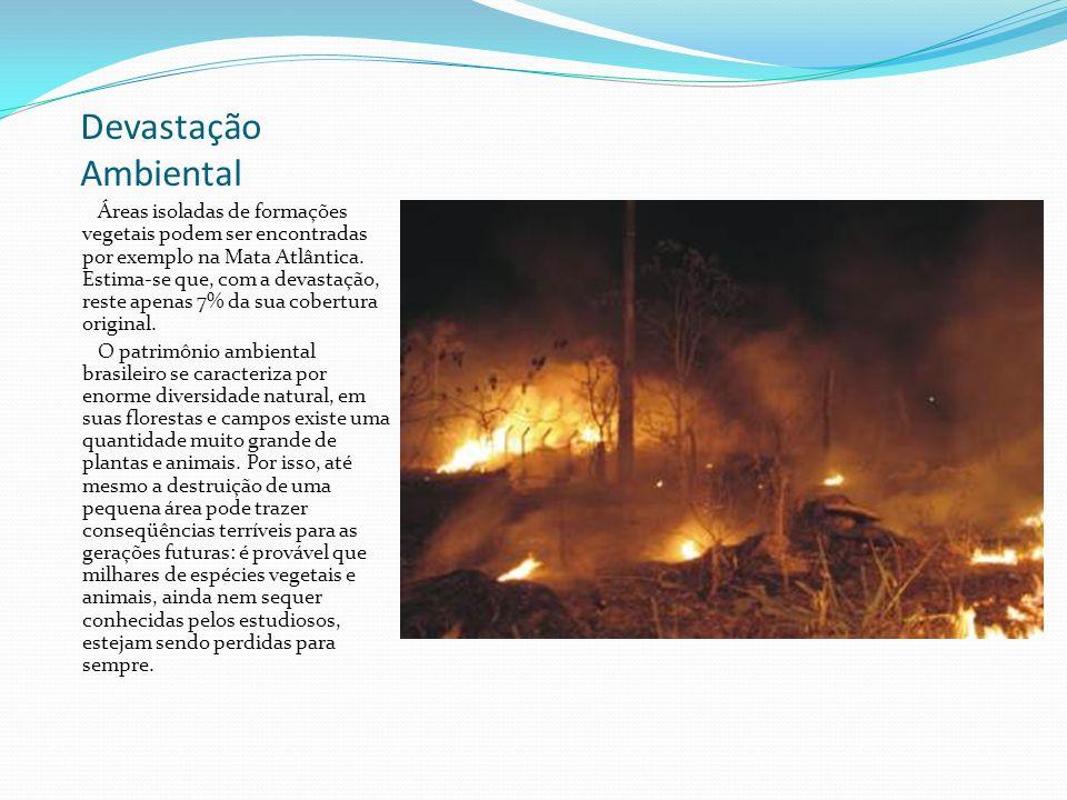A Devastação ambiental O patrimônio ambiental do território brasileiro em sendo dilapidado há muitos séculos, num processo que começou antes mesmo da