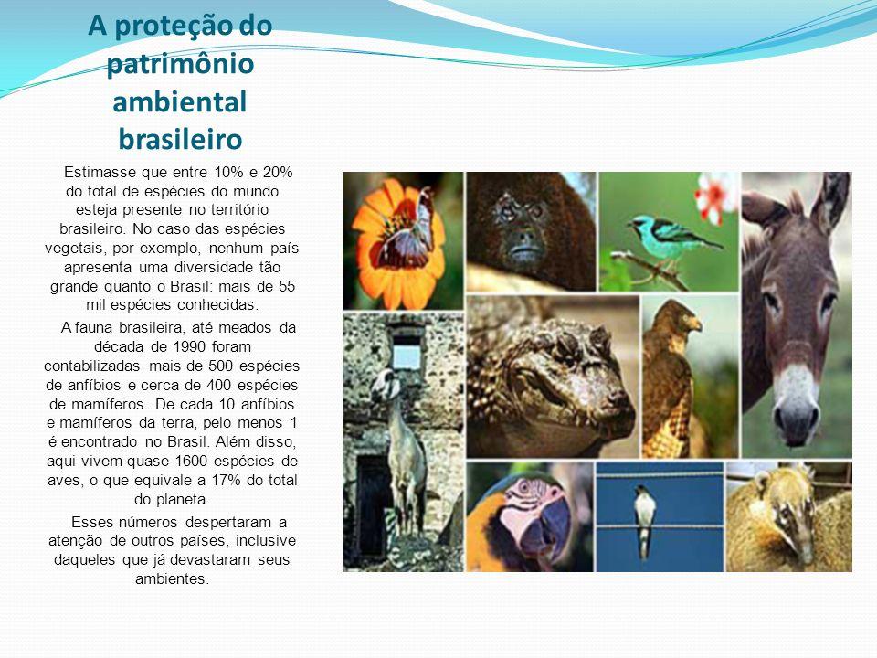 A proteção do patrimônio ambiental brasileiro Estimasse que entre 10% e 20% do total de espécies do mundo esteja presente no território brasileiro.