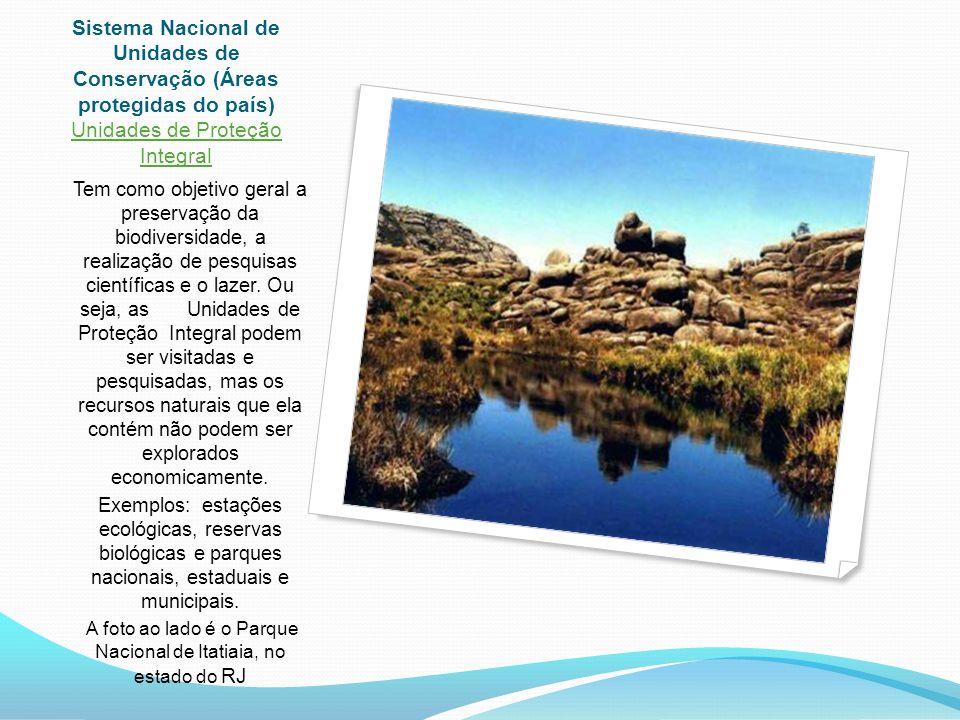 Sistema Nacional de Unidades de Conservação (Áreas protegidas do país) Unidades de Proteção Integral Tem como objetivo geral a preservação da biodiversidade, a realização de pesquisas científicas e o lazer.