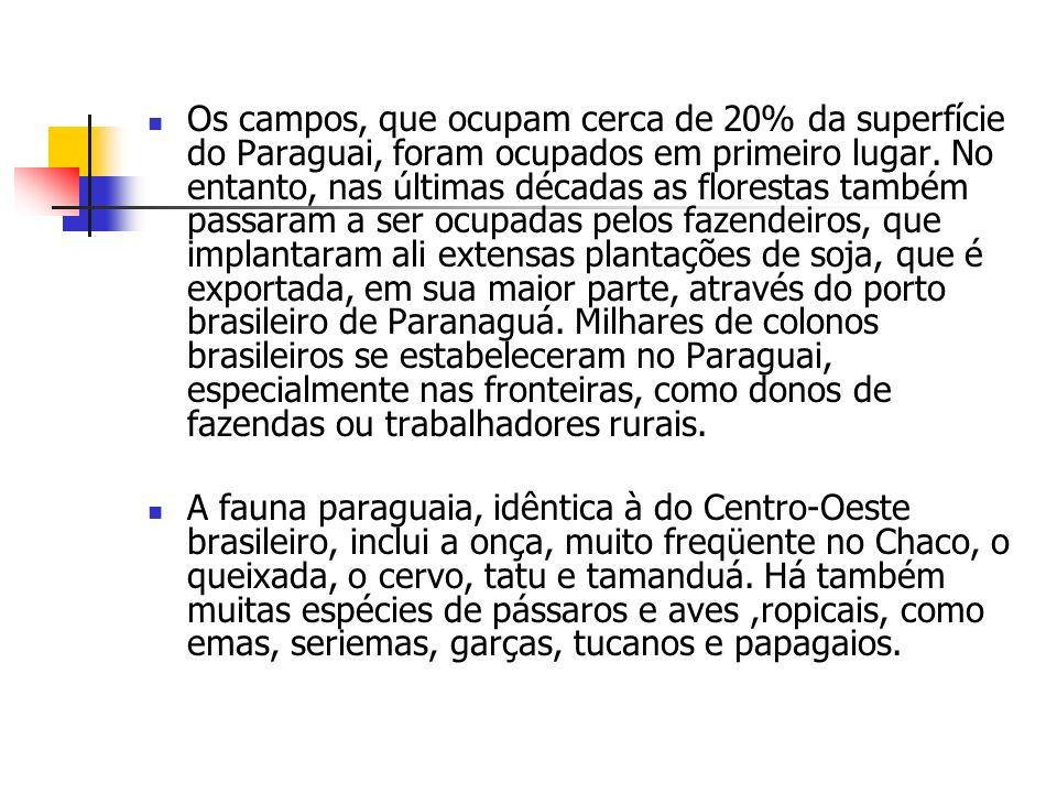 Os campos, que ocupam cerca de 20% da superfície do Paraguai, foram ocupados em primeiro lugar. No entanto, nas últimas décadas as florestas também pa