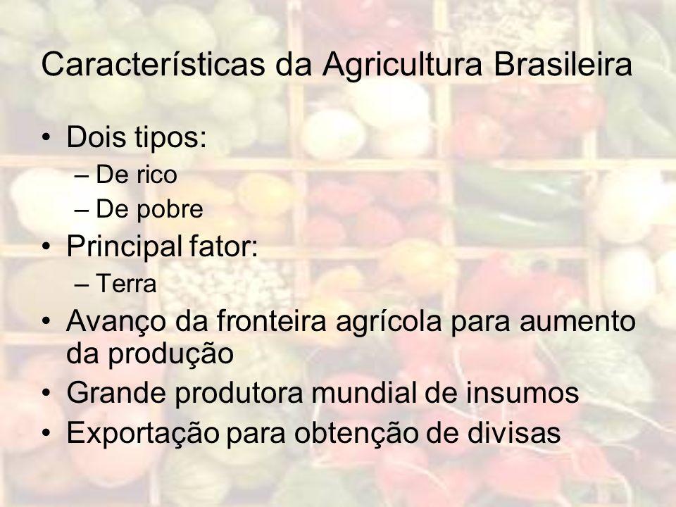 Características da Agricultura Brasileira Dois tipos: –De rico –De pobre Principal fator: –Terra Avanço da fronteira agrícola para aumento da produção