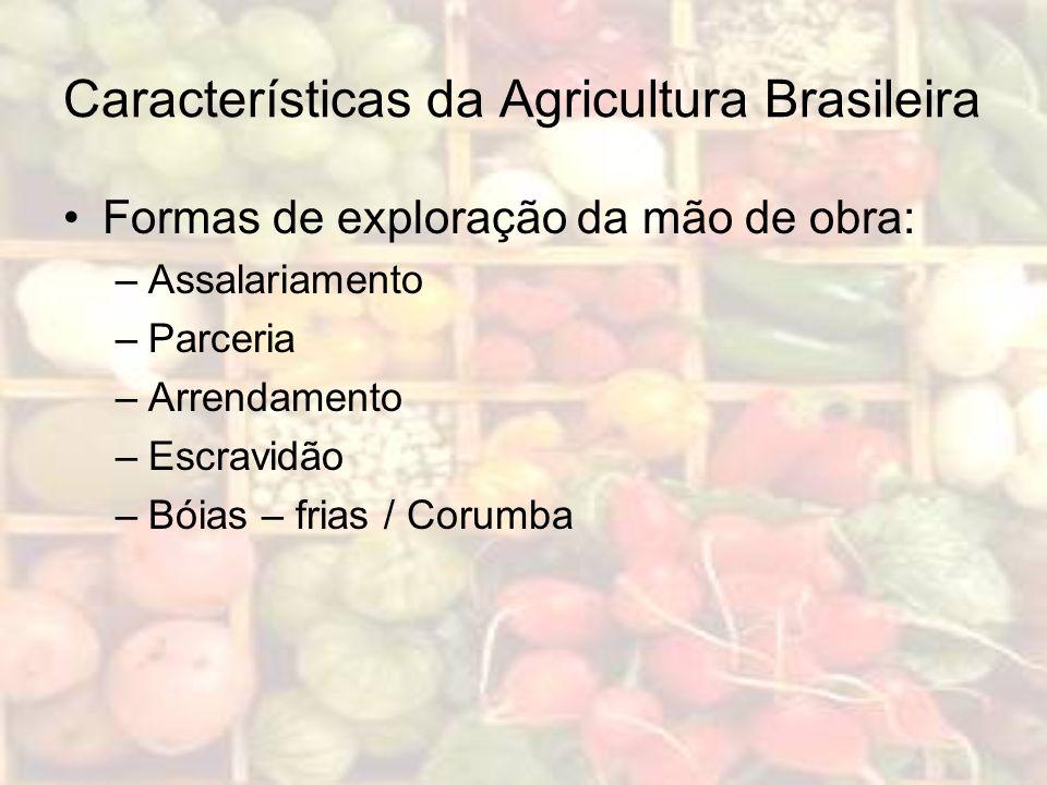 Características da Agricultura Brasileira Formas de exploração da mão de obra: –Assalariamento –Parceria –Arrendamento –Escravidão –Bóias – frias / Co