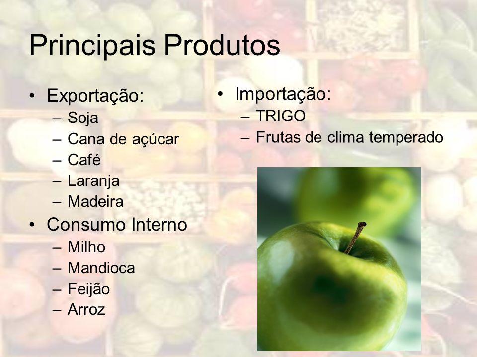 Principais Produtos Exportação: –Soja –Cana de açúcar –Café –Laranja –Madeira Consumo Interno –Milho –Mandioca –Feijão –Arroz Importação: –TRIGO –Frut