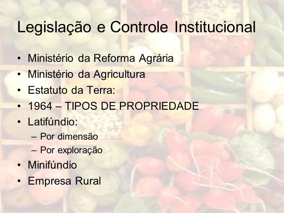 Legislação e Controle Institucional Ministério da Reforma Agrária Ministério da Agricultura Estatuto da Terra: 1964 – TIPOS DE PROPRIEDADE Latifúndio: