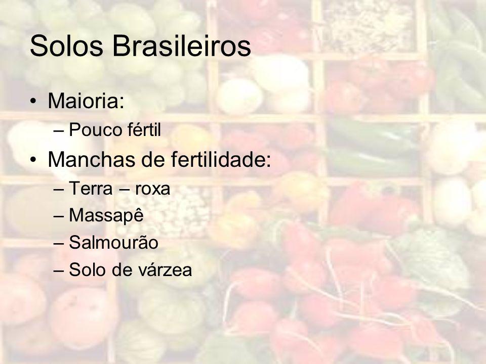 Solos Brasileiros Maioria: –Pouco fértil Manchas de fertilidade: –Terra – roxa –Massapê –Salmourão –Solo de várzea