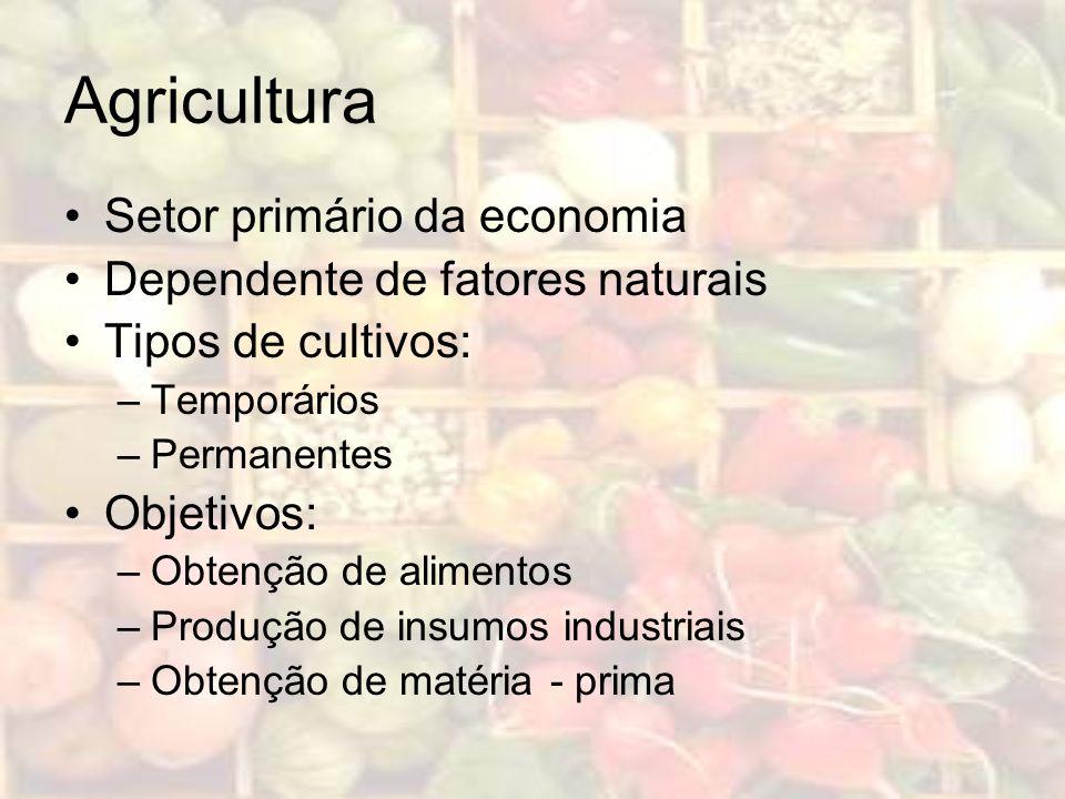 Agricultura Setor primário da economia Dependente de fatores naturais Tipos de cultivos: –Temporários –Permanentes Objetivos: –Obtenção de alimentos –