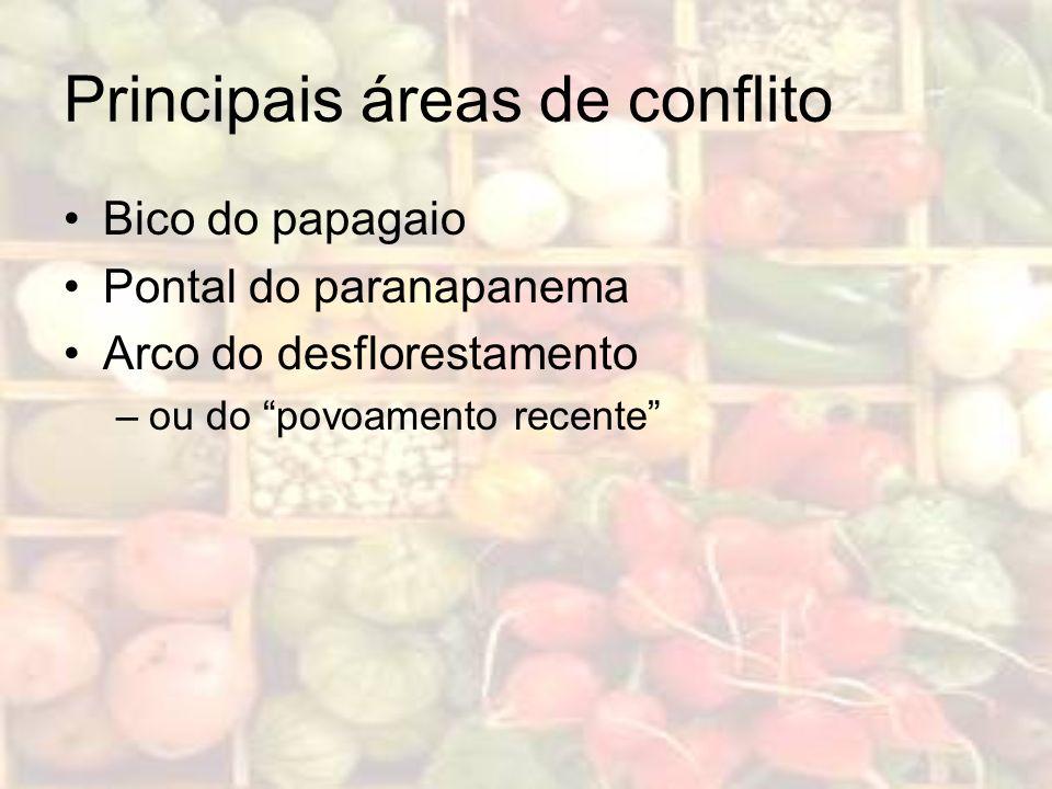 Principais áreas de conflito Bico do papagaio Pontal do paranapanema Arco do desflorestamento –ou do povoamento recente