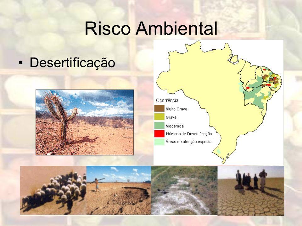 Risco Ambiental Desertificação