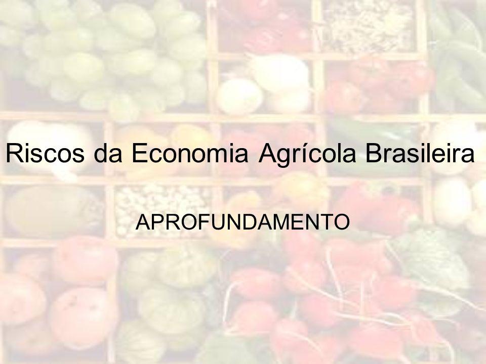Riscos da Economia Agrícola Brasileira APROFUNDAMENTO