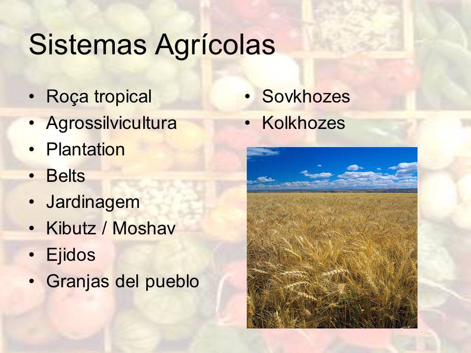 Sistemas Agrícolas Roça tropical Agrossilvicultura Plantation Belts Jardinagem Kibutz / Moshav Ejidos Granjas del pueblo Sovkhozes Kolkhozes