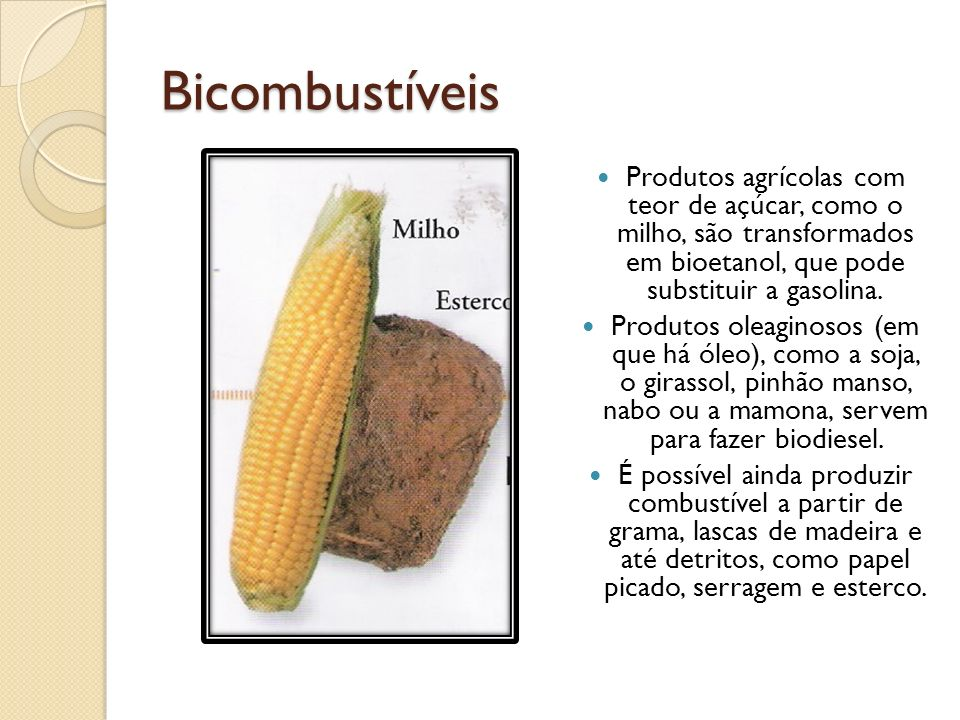 Bicombustíveis Produtos agrícolas com teor de açúcar, como o milho, são transformados em bioetanol, que pode substituir a gasolina. Produtos oleaginos