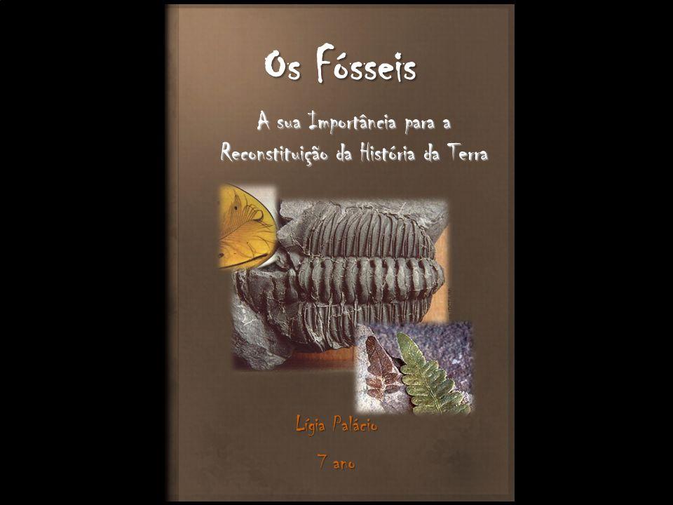 Os Fósseis A sua Importância para a Reconstituição da História da Terra Lígia Palácio 7 ano