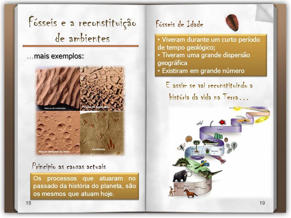 Fósseis e a reconstituição de ambientes 18 19 mais exemplos: … mais exemplos: E assim se vai reconstituindo a história da vida na Terra… Principio as