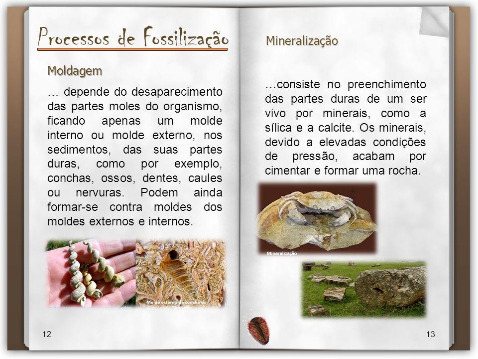 Processos de Fossilização 12 13 Moldagem … depende do desaparecimento das partes moles do organismo, ficando apenas um molde interno ou molde externo,