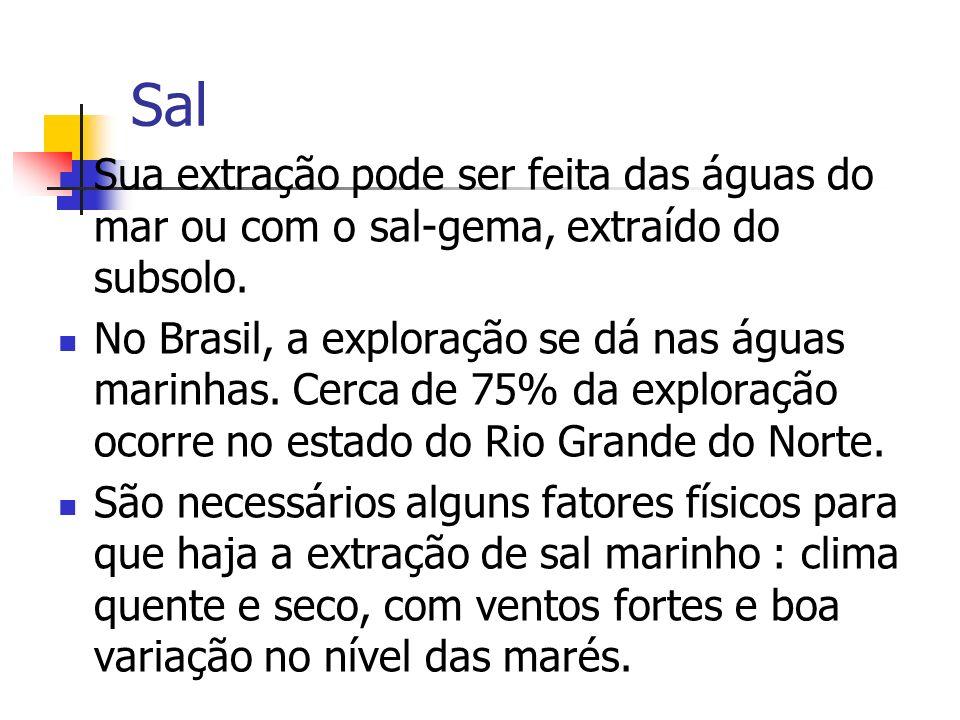 Sal Sua extração pode ser feita das águas do mar ou com o sal-gema, extraído do subsolo. No Brasil, a exploração se dá nas águas marinhas. Cerca de 75