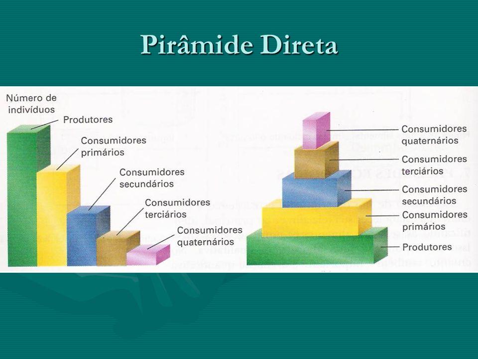 Pirâmide Direta