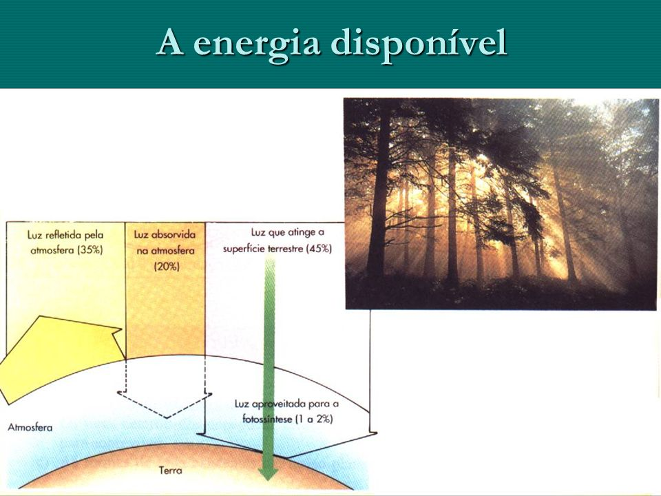 A energia disponível