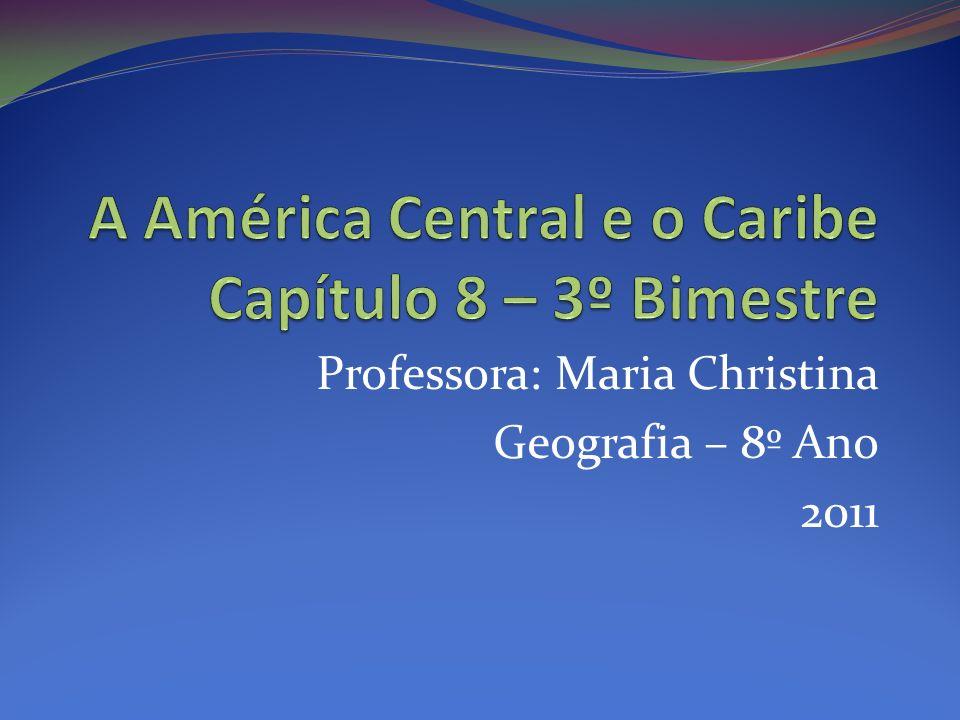 Professora: Maria Christina Geografia – 8º Ano 2011