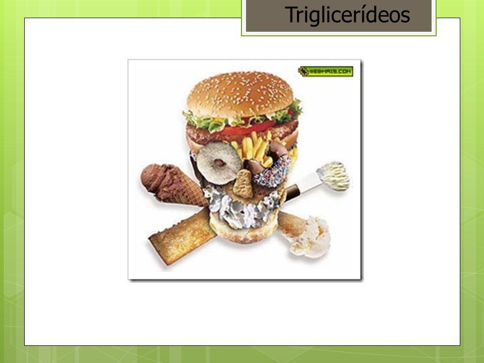 Triglicerídeos