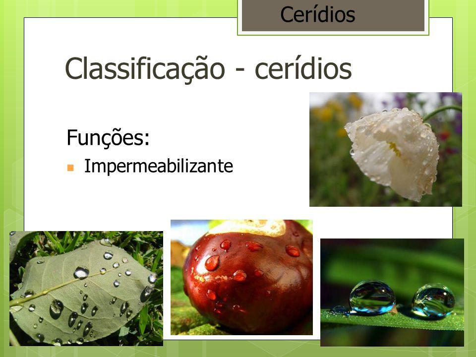 Classificação - cerídios Funções: Impermeabilizante Cerídios
