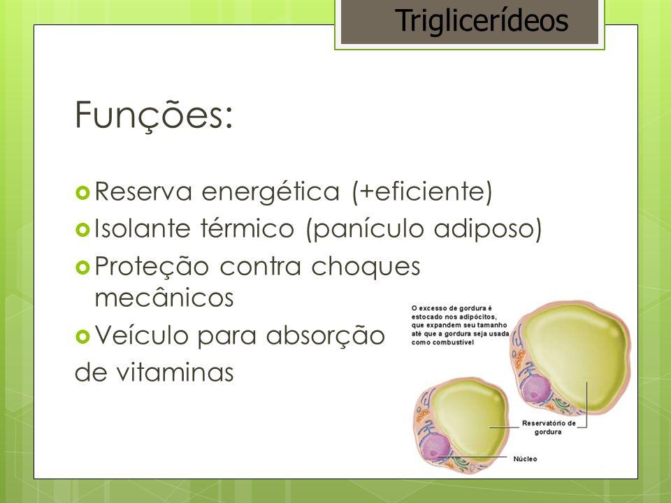 Exemplos: óleos e gorduras glicerol + 3 moléculas de ácidos graxos = triglicerídio Triglicerídeos
