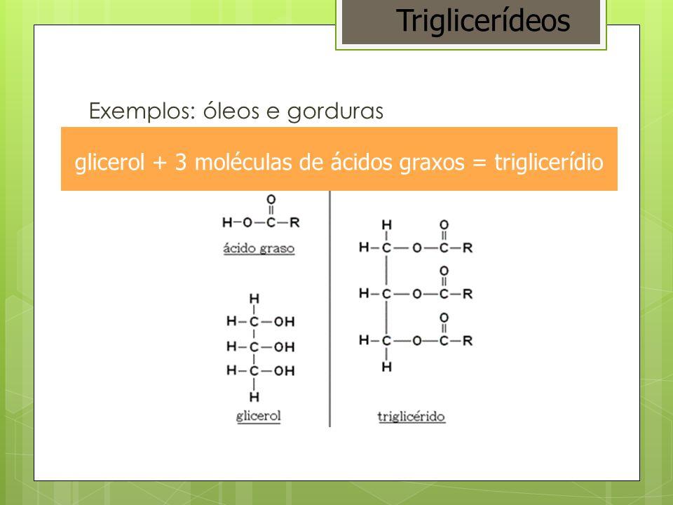 ácidos graxos saturadoinsaturado Triglicerídeos