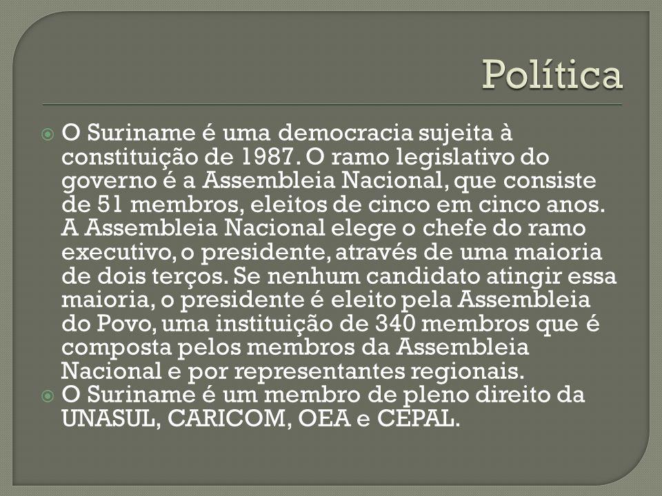 O Suriname é uma democracia sujeita à constituição de 1987. O ramo legislativo do governo é a Assembleia Nacional, que consiste de 51 membros, eleitos