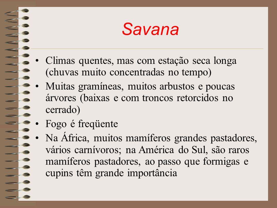 Savana Climas quentes, mas com estação seca longa (chuvas muito concentradas no tempo) Muitas gramíneas, muitos arbustos e poucas árvores (baixas e co