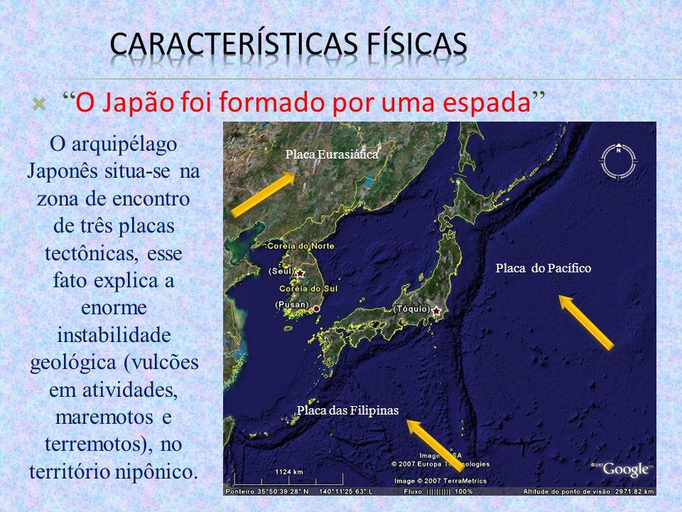 O Japão foi formado por uma espada Placa Eurasiática Placa das Filipinas Placa do Pacífico O arquipélago Japonês situa-se na zona de encontro de três