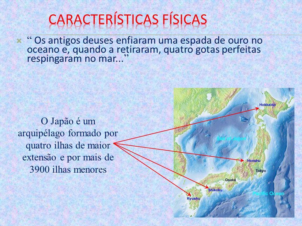 O relevo apresenta uma enorme quantidade de cadeias de montanhas, com altitudes superiores a 2 mil metros.