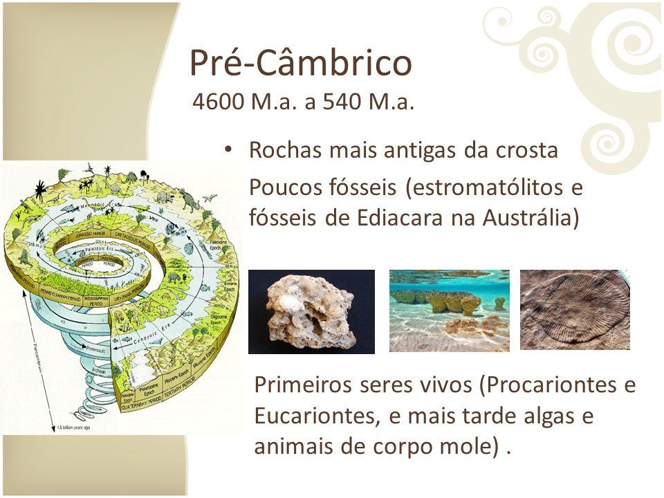 Pré-Câmbrico Rochas mais antigas da crosta Poucos fósseis (estromatólitos e fósseis de Ediacara na Austrália) 4600 M.a.