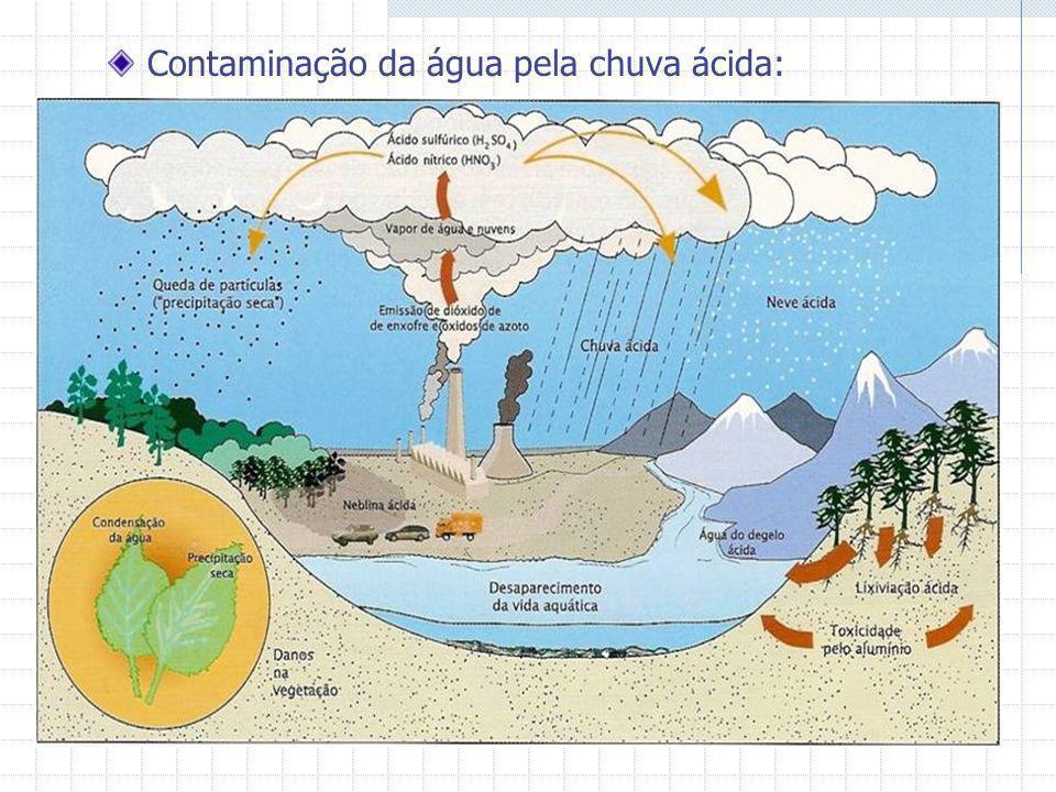 Contaminação da água pela chuva ácida:
