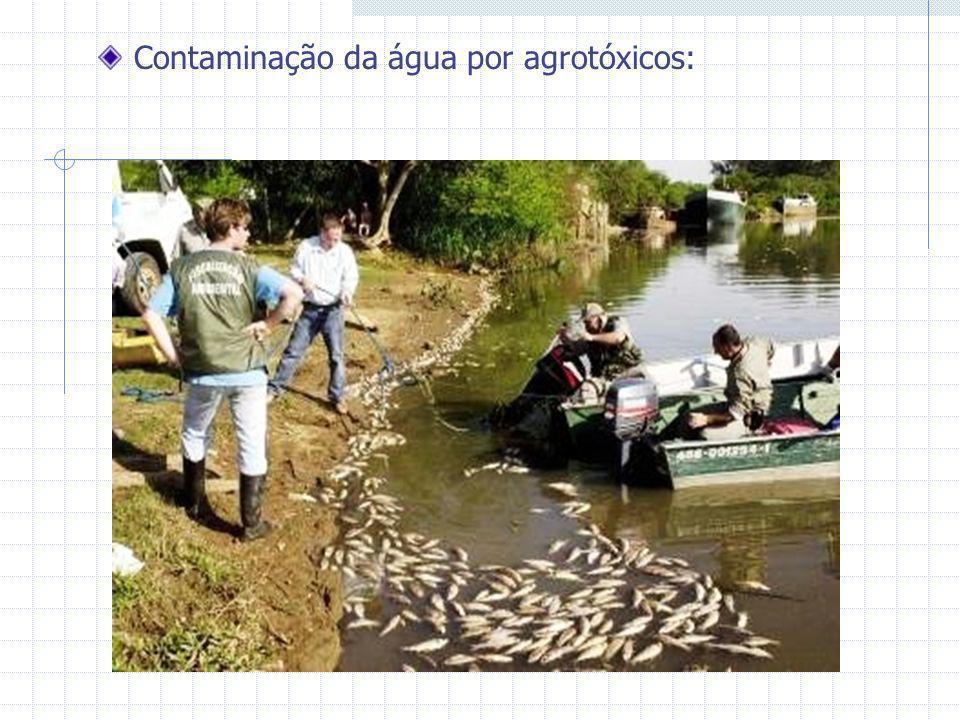 Contaminação da água por agrotóxicos: