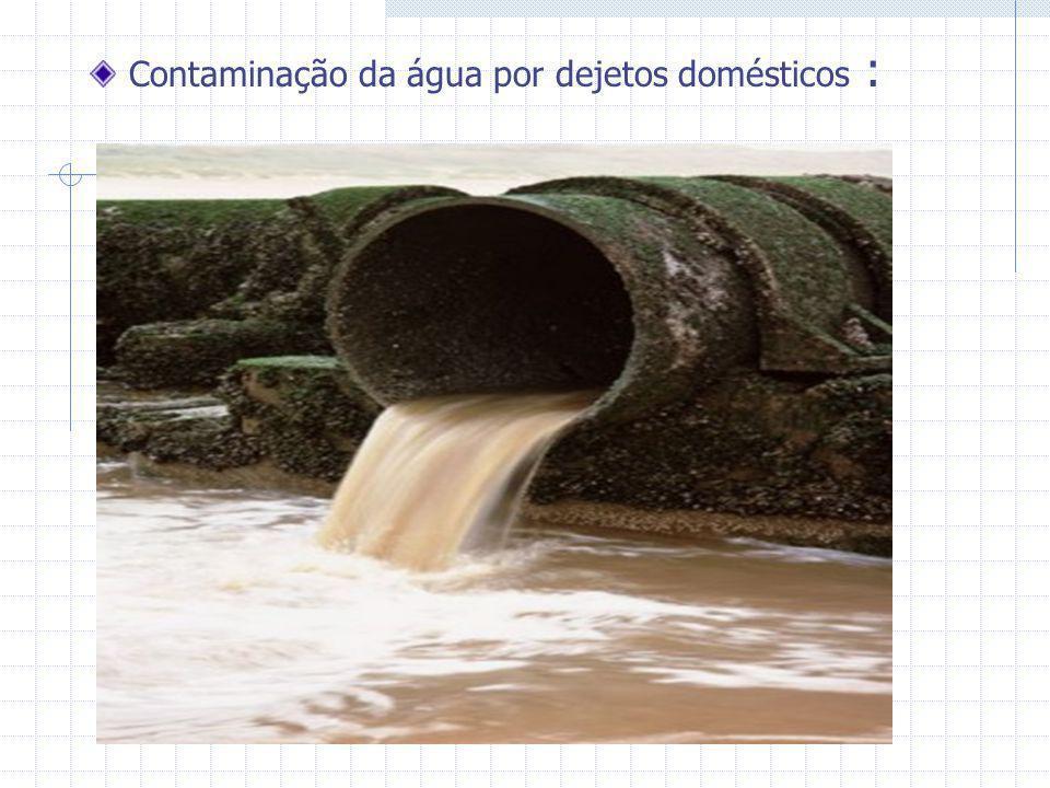 Contaminação da água por dejetos domésticos :
